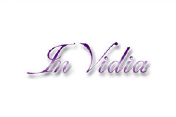 INvidia1